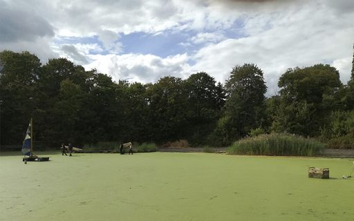 green algae covered rainwater collection basin with trees in middle distance and cloudy sky with a window of blue in background